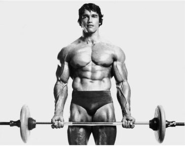 Arnold's standing barbell curls