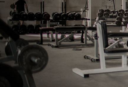 rogue gym