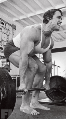 arnold deadlift
