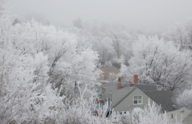 icy fog