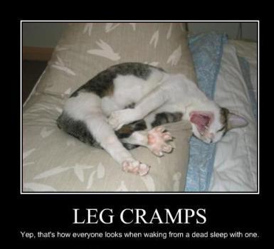 leg cramp cat