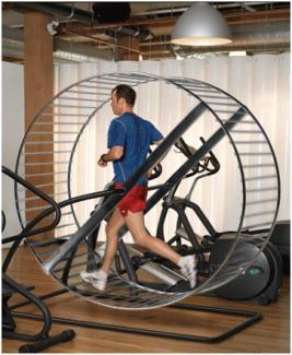 rat cardio wheel