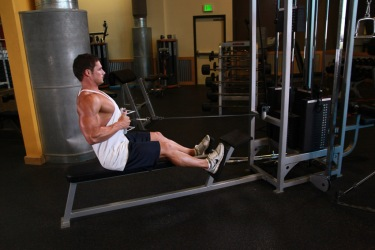 seated cable low rows
